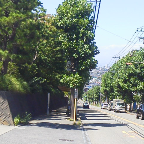 坂道 Run トレーニング